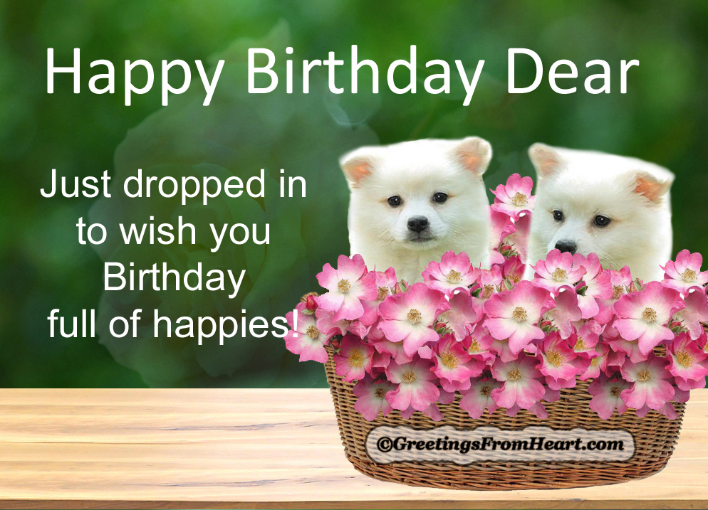 Cute Birthday Greetings Cute birthday Wishes – Unique Happy Birthday Greetings