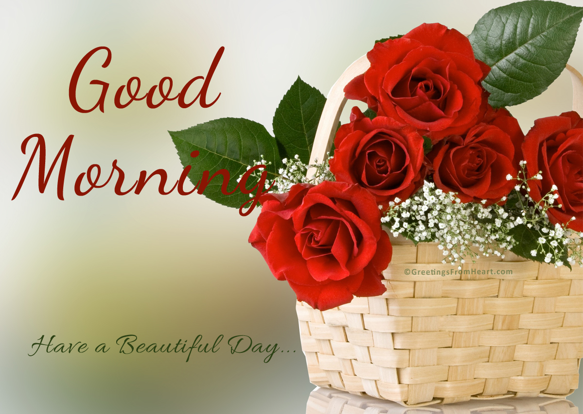 Good morning, Have a beautiful day