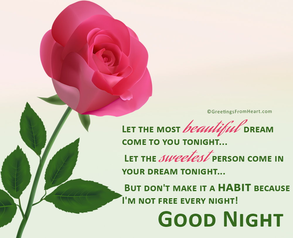 Good Night Messages With Beautiful Flowers