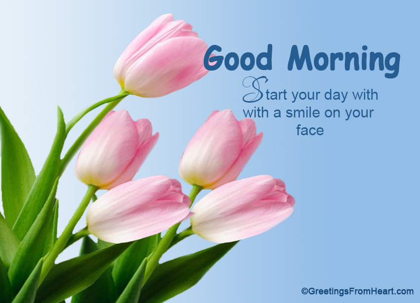 Good morning m4hsunfo