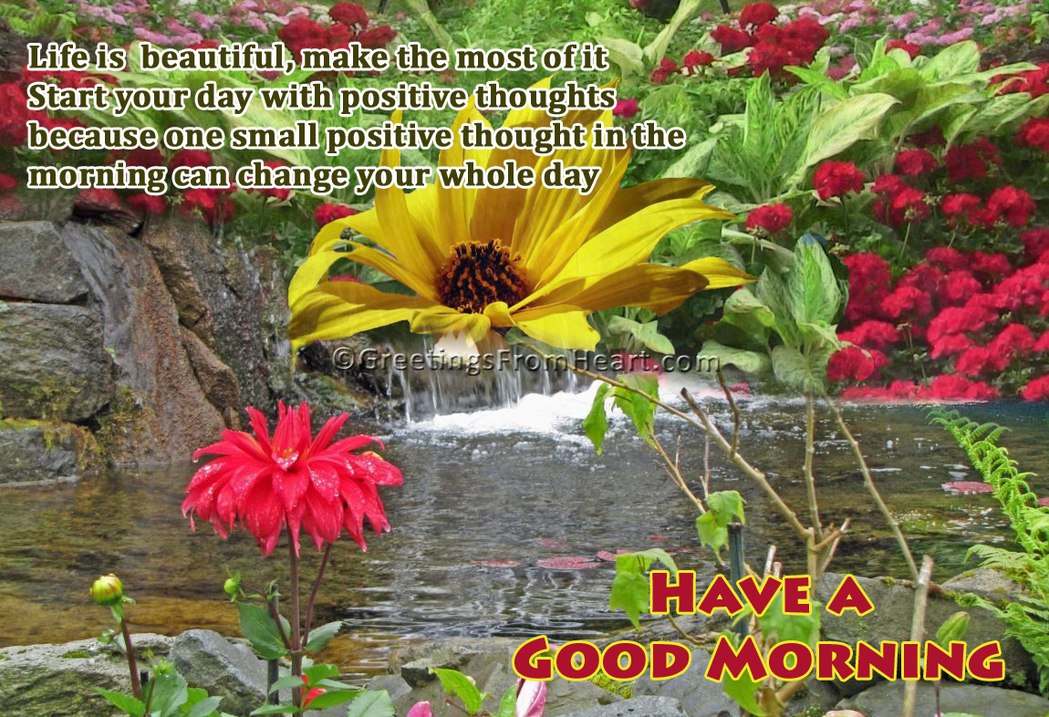 Have A Good Morning