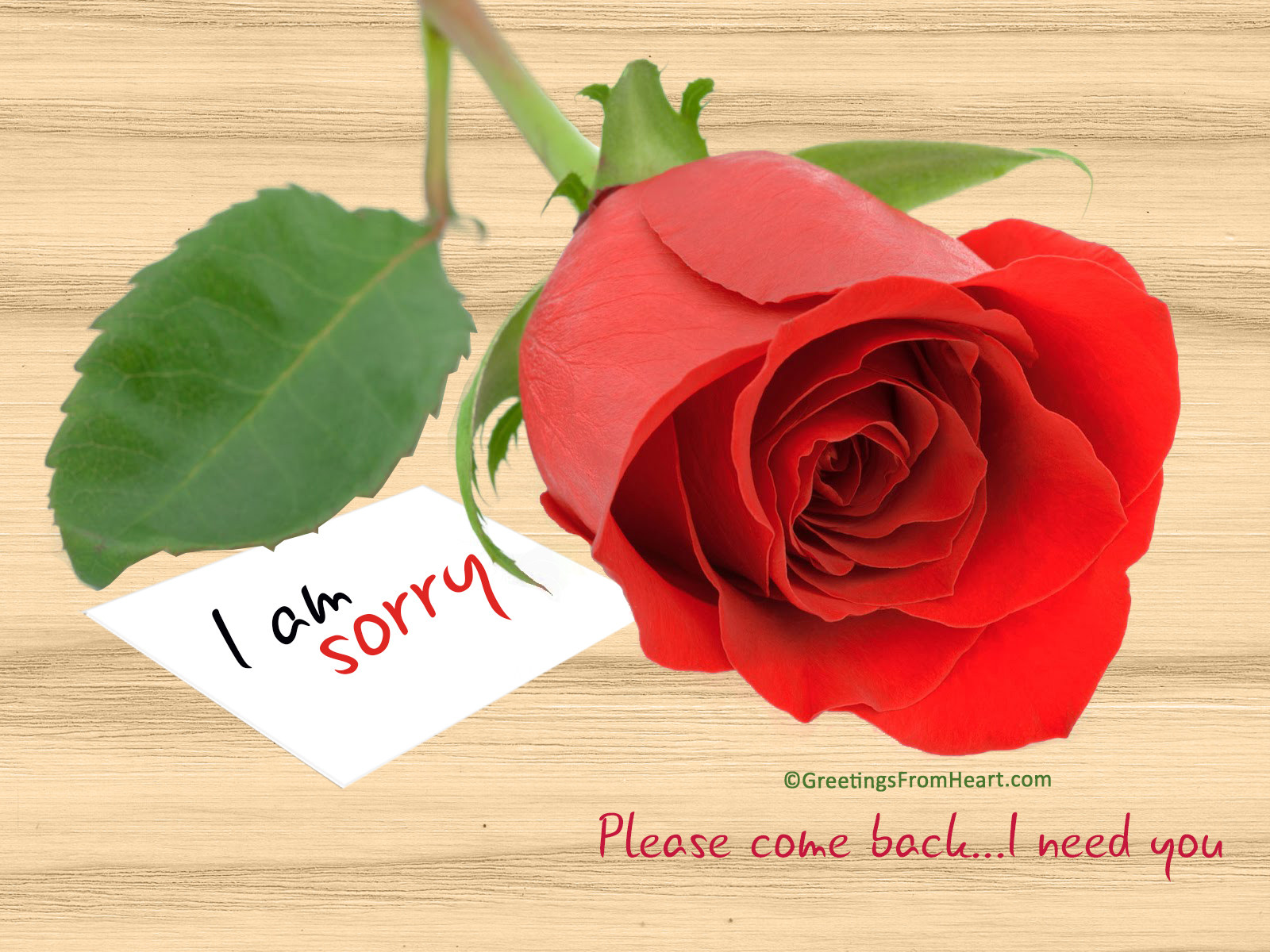 please come back i need you sorry image for gf