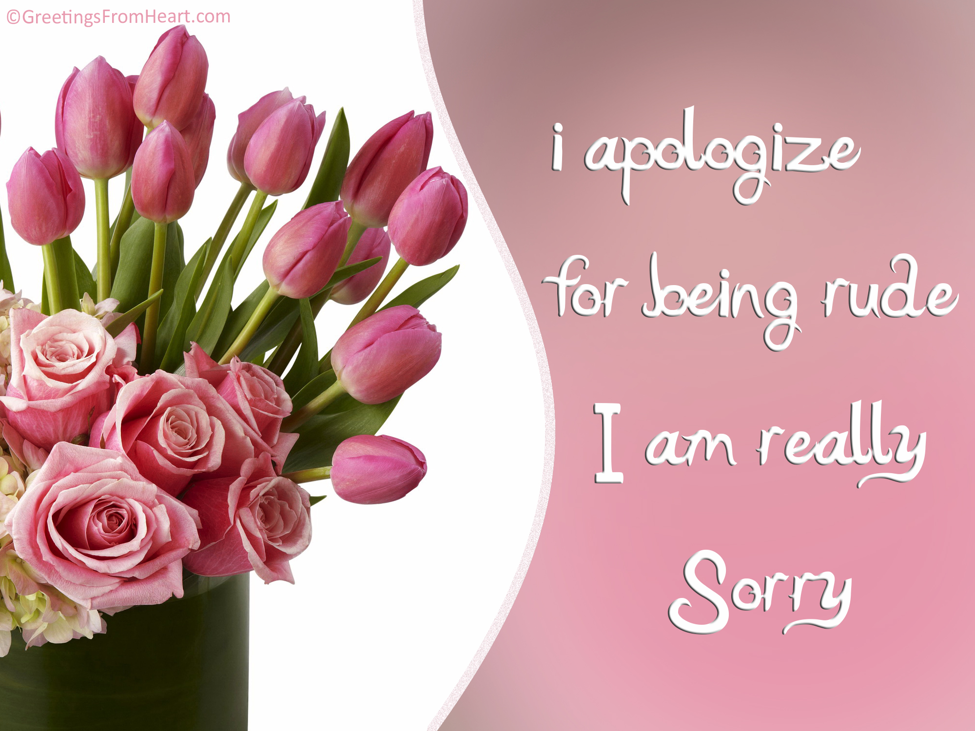 Sorry apologize for being rude cards