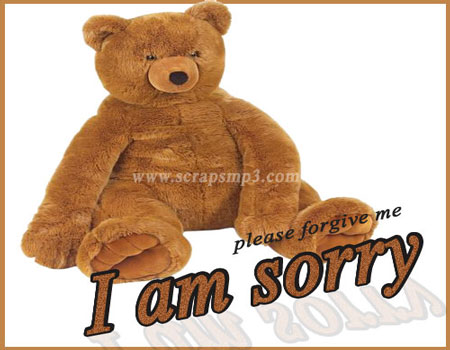 i am sorry scrap